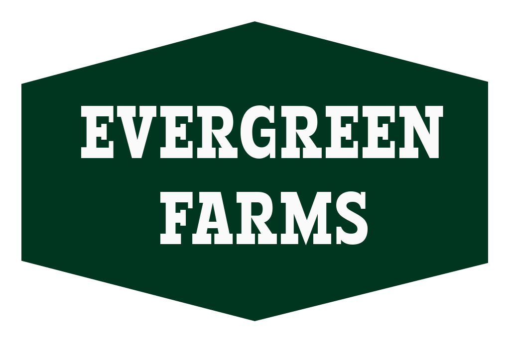 Evergreen Farms